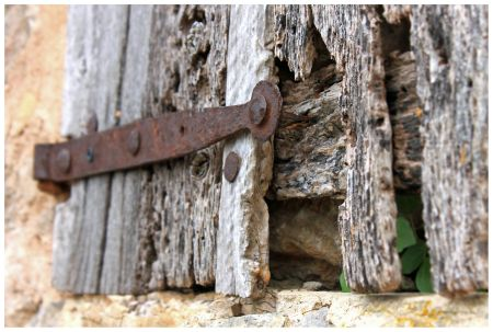 The Difference Between Wood Rot & Termite Damage